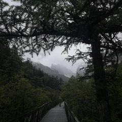 稲城亜丁のユーザー投稿写真