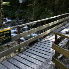 Rob Roy Glacier Track User Photo