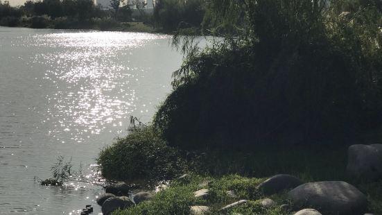 淡水河濱公園