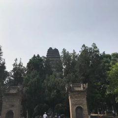 西安曲江春曉園用戶圖片