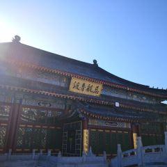 藥泉山鐘靈禪寺用戶圖片
