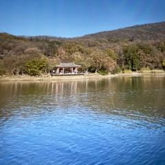 紫霞湖用戶圖片