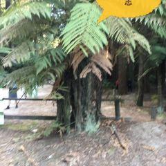 Woodside Estate User Photo