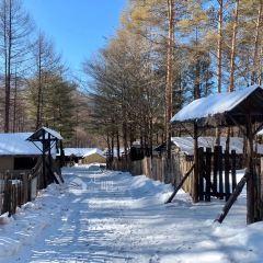 威虎山國家森林公園用戶圖片