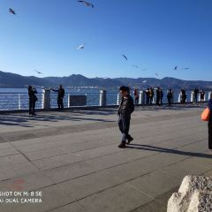 뎬츠(전지) 여행 사진