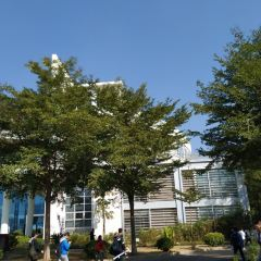 Zhengnianjin Library User Photo
