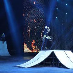 長隆國際馬戲大劇院用戶圖片