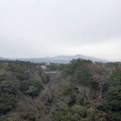 천지연 폭포 여행 사진