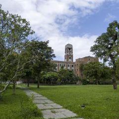 台灣大學用戶圖片