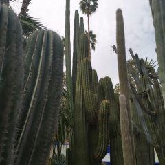 UBC Botanical Garden User Photo