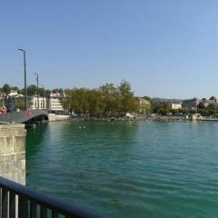 Lake Zurich, Eastern Bank 여행 사진