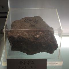 지구과학박물관 여행 사진