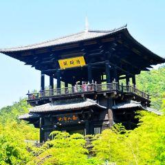 Datang Gong Tea House User Photo