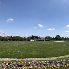 王宮花園用戶圖片