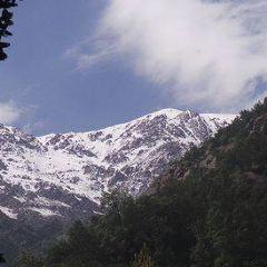 Parque Quebrada de Macul用戶圖片