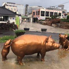 흑돼지 거리 여행 사진