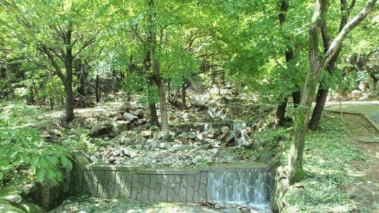 속리산말티재자연휴양림