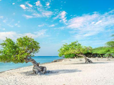 Eagle Beach Travel Guides 2020