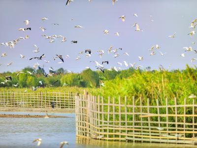 항저우 만 국립습지공원