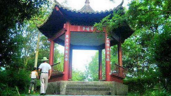 Yuping Park
