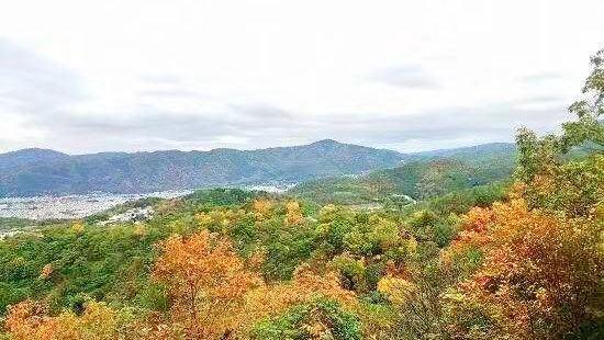 Mt. Daimonji