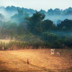 바콩 여행 사진