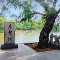 라오롱완 여행 사진