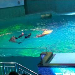南昌萬達海洋樂園用戶圖片