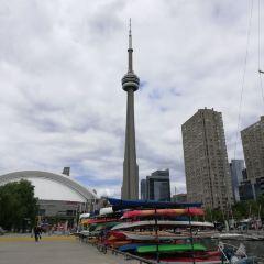 Toronto Harbour User Photo