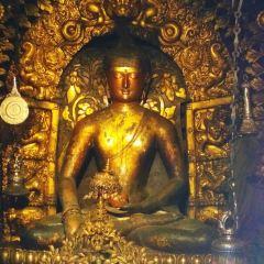 Golden Temple User Photo
