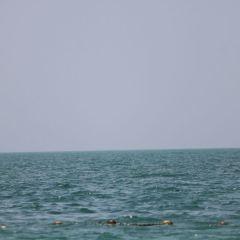 주메이라 비치 여행 사진