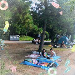 Odaiba Seaside Park User Photo