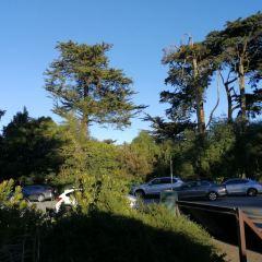 斯翠賓植物園和史坦哈特水族館用戶圖片