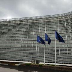 European Commission User Photo