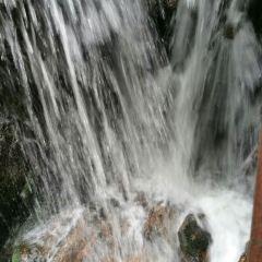 Dongxing Pingfeng Rainforest Park User Photo