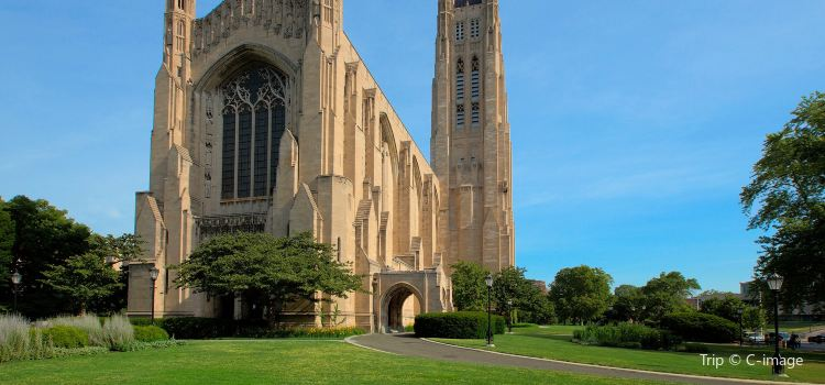 The University of Chicago3