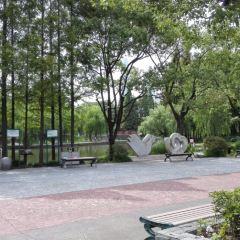 Tangqiao Park (East Gate 2) User Photo