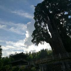 雲中大漈用戶圖片