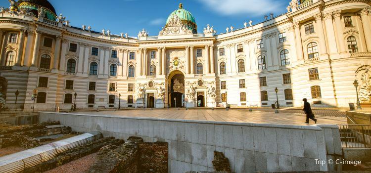 Roman Ruins – Michaelerplatz1