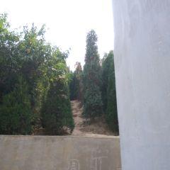 Yafu Cemetery User Photo