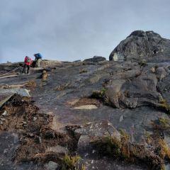 키나발루 국립공원 여행 사진