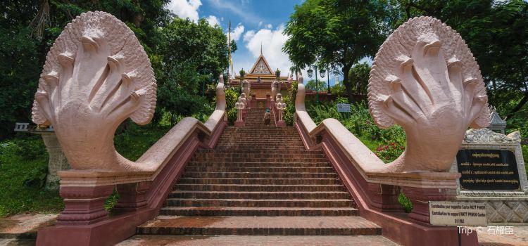 Wat Phnom3