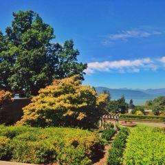 UBC Rose Garden User Photo