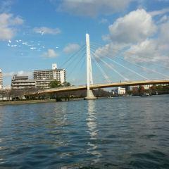 Aqua-Liner User Photo