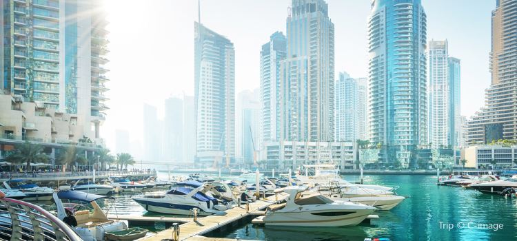 Dubai Yacht Tourism1