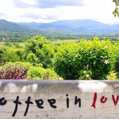 Coffee in Love User Photo
