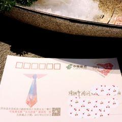 Shota Muni Sushi&Grill  (Joy City) User Photo