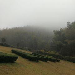 톈무후 여행 사진