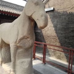 Xi'an Beilin Museum User Photo