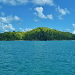 South Molle Island User Photo